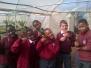 Gr 4 Kazimingi Nursery Visit